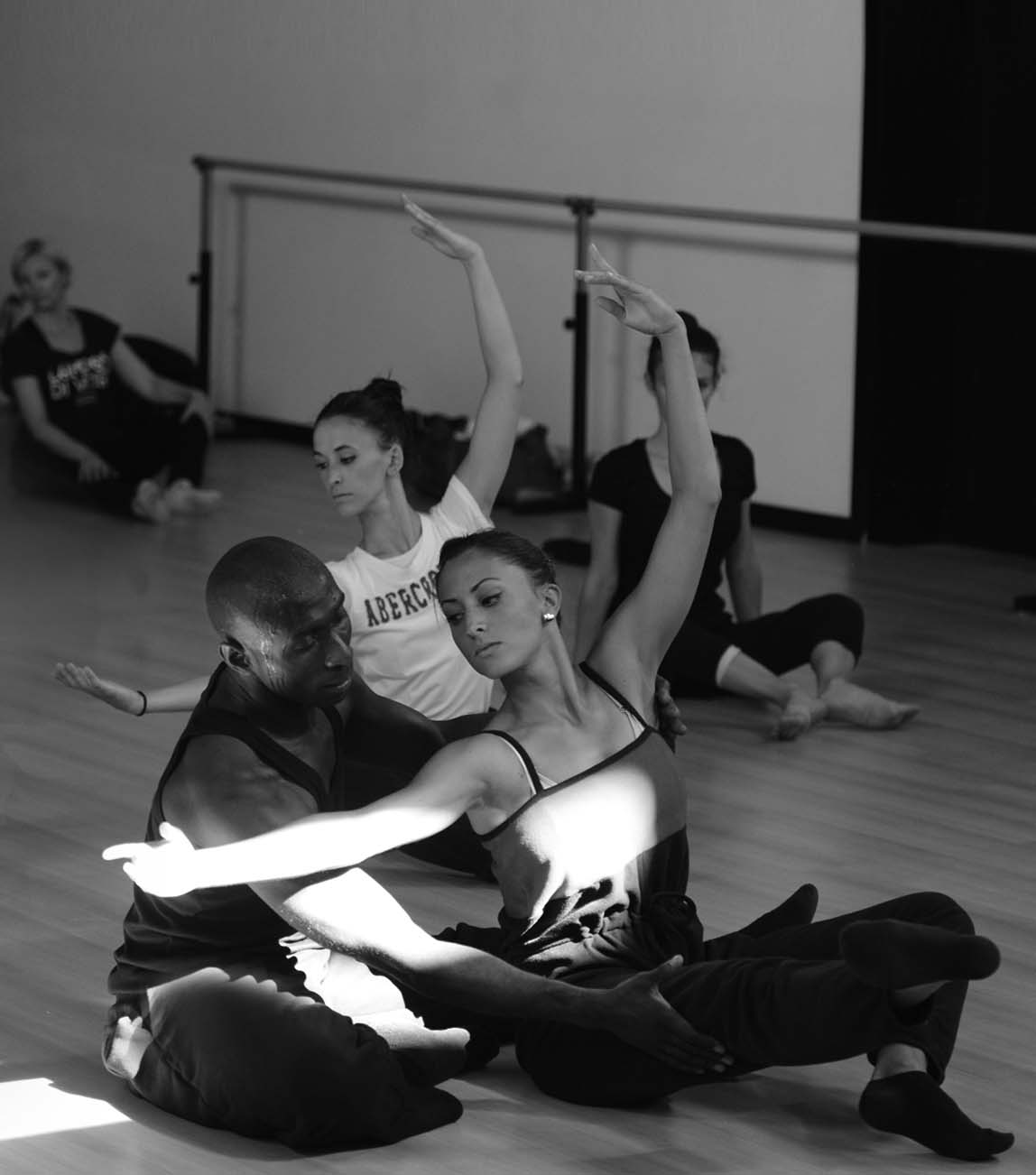 Dance, Posture and Performance conference at ISTD Summer School in Sportilia